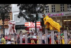 Lion dance on Tet Holiday